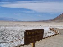 Desert 116